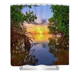 Mangrove Sunset From Jensen Beach Florida Shower Curtain by Justin Kelefas