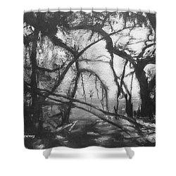 Mangroves By Moonlight Shower Curtain