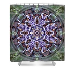 Manifestation Magic Shower Curtain