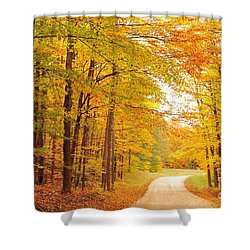 Manisee National Forest In Autumn Shower Curtain