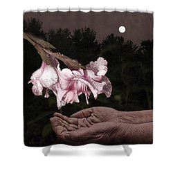 Manna Shower Curtain