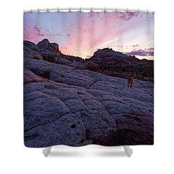 Man's Best Friend Sunset Shower Curtain by Jonathan Davison