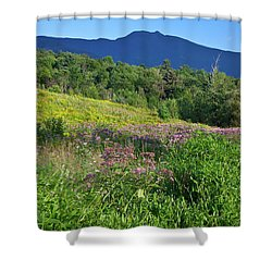 Shower Curtain featuring the photograph Mansfield Meadow by Susan Cole Kelly