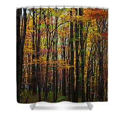Shower Curtain featuring the photograph Many Colors Of Autumn by April Reppucci