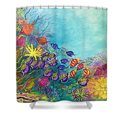 Many Colours Shower Curtain