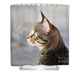 Shower Curtain featuring the photograph Many Faces Of Monty.. by Jolanta Anna Karolska
