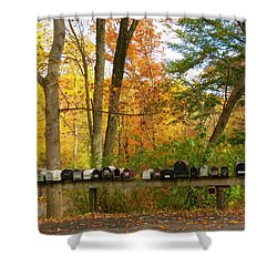 Many Shapes And Sizes Shower Curtain by Jeanette Oberholtzer