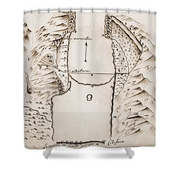 Map: Danube Shower Curtain by Granger