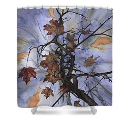 Maple Autumn Splash Shower Curtain by Carolyn Doe