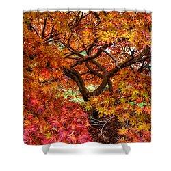 Maple Beauty Shower Curtain