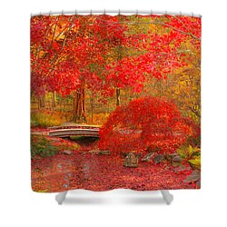 Shower Curtain featuring the photograph Maple Bridge by Geraldine DeBoer