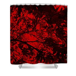 Shower Curtain featuring the photograph Maple Dance In Red Velvet by Paul Cammarata