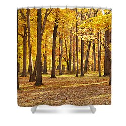 Shower Curtain featuring the photograph Maple Glory by Francesa Miller