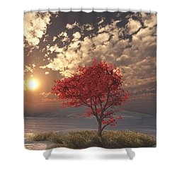 Maple Shower Curtain