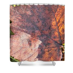 Maple Leaf And Grass Shower Curtain