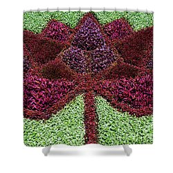 Shower Curtain featuring the photograph Maple Leaf by John Rizzuto