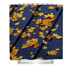 Maple Leaves On A Metal Roof Shower Curtain