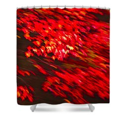 Maple Red Abstract Shower Curtain