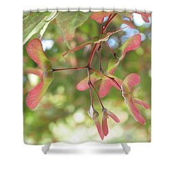 Maple Seeds Shower Curtain