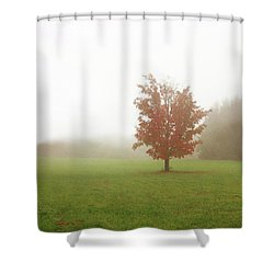 Shower Curtain featuring the photograph Maple Tree In Fog With Fall Colors  by Brooke T Ryan