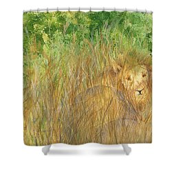 Shower Curtain featuring the painting Mara The Lioness by Vicki  Housel