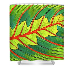 Maranta Red 2 Shower Curtain