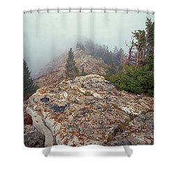 Marble View Fog-sq Shower Curtain