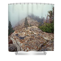 Marble View Fog Shower Curtain
