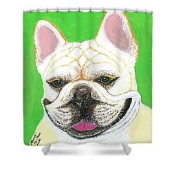Shower Curtain featuring the painting Marcel French Bulldog by Ania M Milo