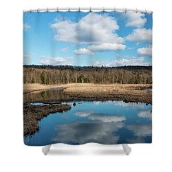 March Afternoon At Black Creek Shower Curtain