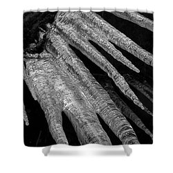 Shower Curtain featuring the photograph March Icicles 3 by Mike Eingle