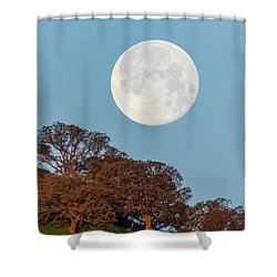 Shower Curtain featuring the photograph March Moonset by Marc Crumpler