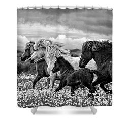 March Of The Mares Shower Curtain