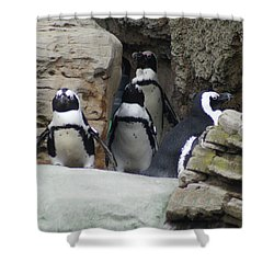 Shower Curtain featuring the photograph March Of The Penguins by B Wayne Mullins
