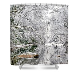 Shower Curtain featuring the photograph March Snow Along Cranberry River by Thomas R Fletcher