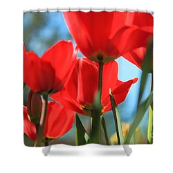 March Tulips Shower Curtain