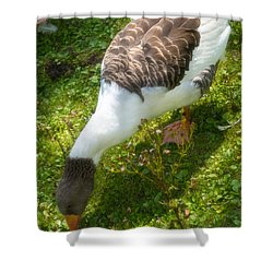 Marching Shower Curtain by Wim Lanclus