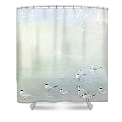Marco Morning Shower Curtain