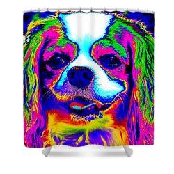 Mardi Gras Dog Shower Curtain