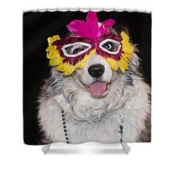 Shower Curtain featuring the photograph Mardi Paws by Cathy Donohoue