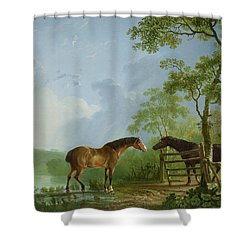 Mare And Stallion In A Landscape Shower Curtain by Sawrey Gilpin