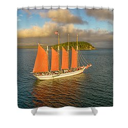Margaret Todd Shower Curtain