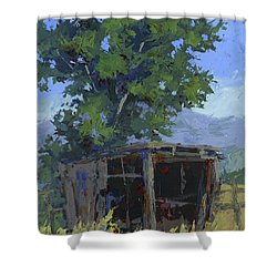 Marginal Shelter Shower Curtain