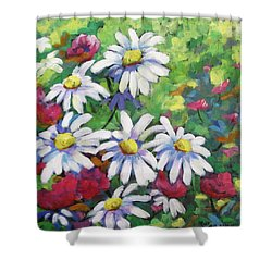 Marguerites 001 Shower Curtain by Richard T Pranke