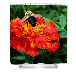 Shower Curtain featuring the photograph Marigold Bee by J L Zarek