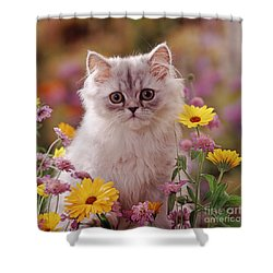 Marigold Chinchilla Shower Curtain