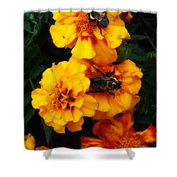 Marigold Cluster Shower Curtain