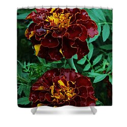 Shower Curtain featuring the photograph Marigold Duo by J L Zarek