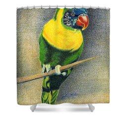 Marigold Lorikeet Shower Curtain
