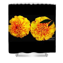 Shower Curtain featuring the photograph Marigolds With Oil Painting Effect by Rose Santuci-Sofranko